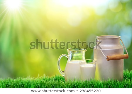 Jug With Milk And Grass Stock photo © adamson