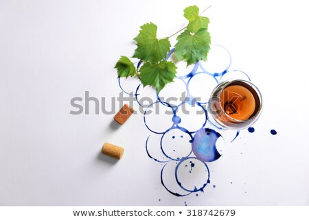 branch of painted blue leaf on a glass with shadows on a blue paper background stock photo © artjazz