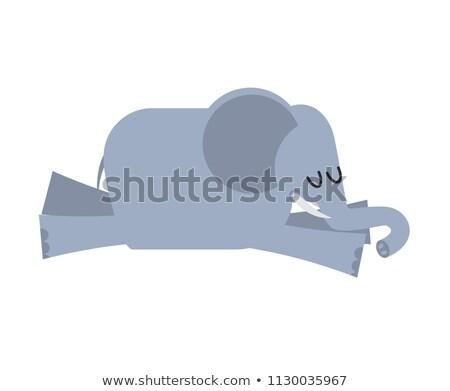 Alszik elefánt állat Afrika álmos vad Stock fotó © popaukropa