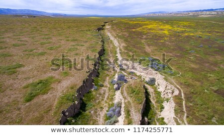 aerial view of California San Andreas Stock photo © vichie81