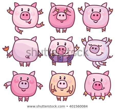 Cartoon varken verbergen illustratie achter teken Stockfoto © cthoman