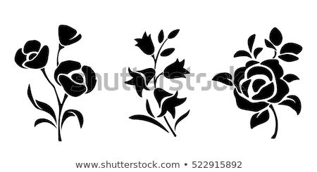 花 · シルエット · ベクトル · 草 · 背景 · 昆虫 - ストックフォト © odina222