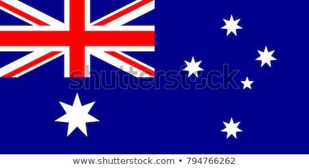 two kangaroo and flag of australia stock photo © colematt