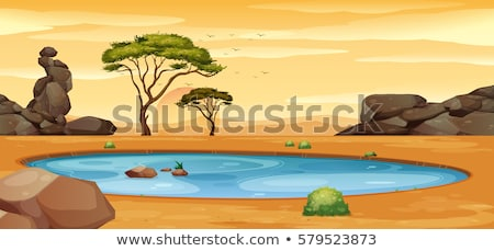 Scene with water hole in the field Stock photo © colematt