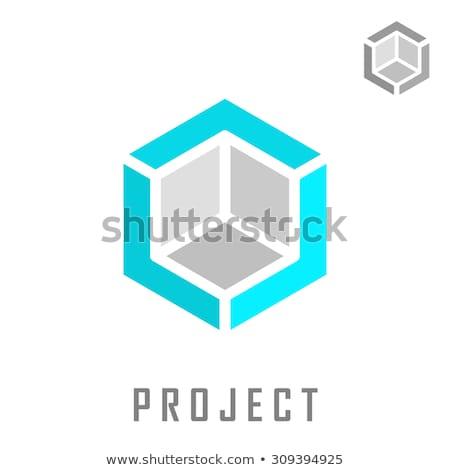 Geométrico cuadro espejismo vector icono diseno Foto stock © blaskorizov