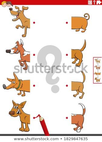 match halves of funny dogs educational game Stock photo © izakowski