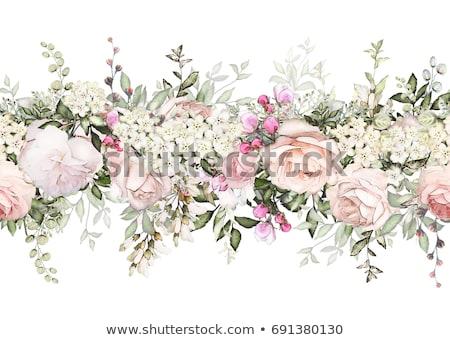 Stock fotó: Vízfesték · rózsaszín · rózsák · festmény · dekoratív · keret
