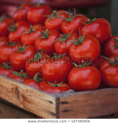 Tomatoes at the market display stall stock photo © Elnur