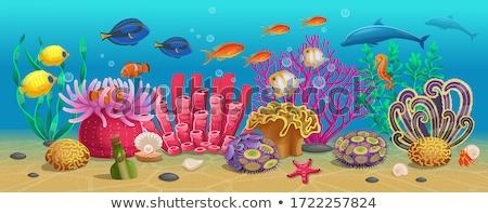 Ingesteld onderwater koraal kunst oceaan groene Stockfoto © bluering