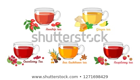 Colorful hot sea buckthorn tea with ginger and honey Stock photo © Illia