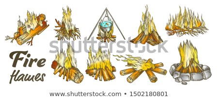 Campfire Collection Different Ink Color Set Vector Stock photo © pikepicture