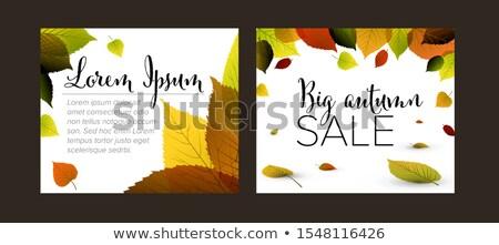 Coleção outono retângulo bandeira templates cair Foto stock © orson