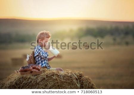 Jongen vergadering hooiberg najaar hemel familie Stockfoto © galitskaya