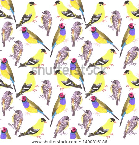 Birds in tints and shades of yellow seamless watercolor bird painting background Stock photo © shawlinmohd