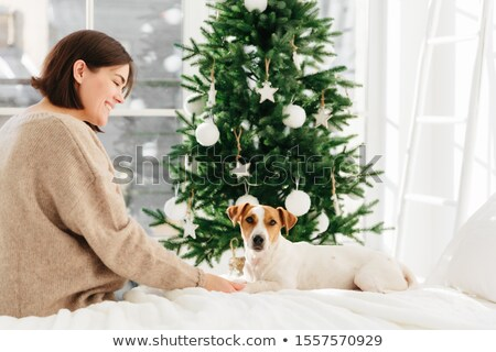 Delighted of optimistic woman with dark hair, wears warm winer sweater, expresses tender feelings to Stock photo © vkstudio
