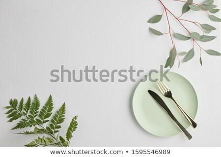 Fehér porcelán tányér acél kés villa Stock fotó © pressmaster