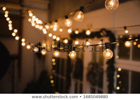 Incandescent Bulb Stock photo © Mcklog