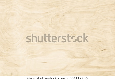 Textured Plywood Stock photo © pictureguy