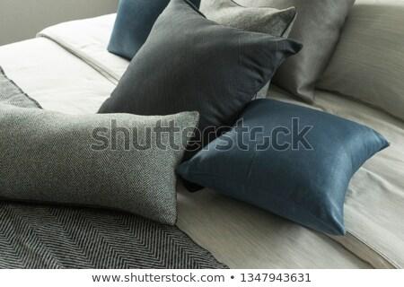 Kortárs kék ezüst szabadtér kanapé kép Stock fotó © gregory21