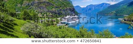 Noruego crucero pesca puerto Noruega Foto stock © Harlekino