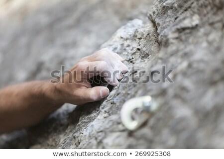 detay · uçurum · ağaç · kaya · taş · kayalar - stok fotoğraf © brozova