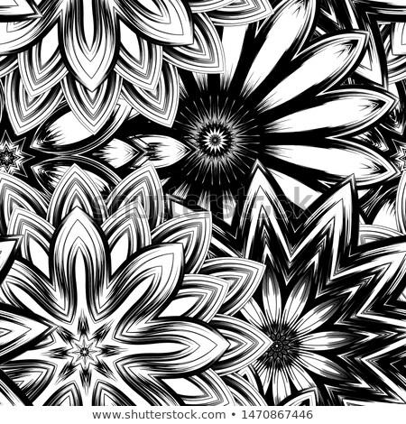 Druppel wild witte bloem groot waterdruppel weide Stockfoto © tab62