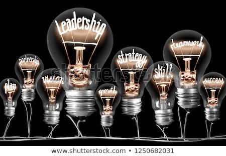 リーダーシップ · ソリューション · ビジネスマン · 徒歩 · 複雑な · 迷路 - ストックフォト © lightsource