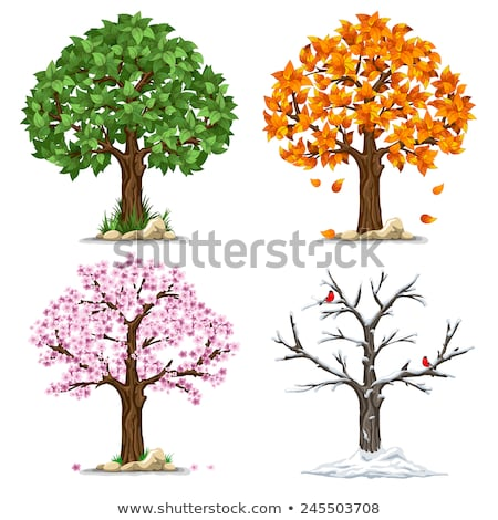 Seasons icon set: winter, spring, summer, autumn. Stock photo © Filata