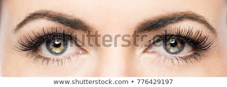 Kuszący piękna shot przepiękny patrząc Zdjęcia stock © pressmaster
