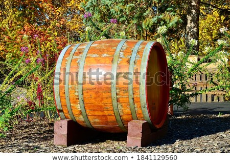 natural wood wine golden barrel cellar stock photo © lunamarina