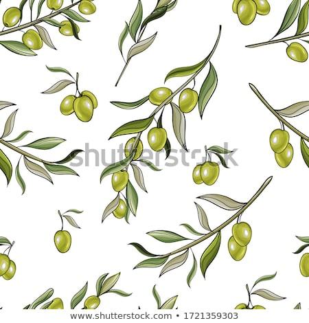 フローラル · パターン · オリーブの木 · 抽象的な · 自然 · 夏 - ストックフォト © hermione