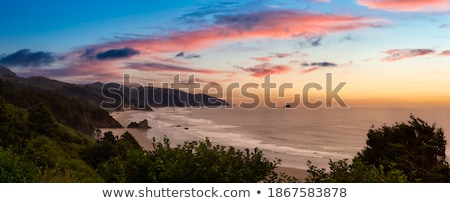 Oregon kustlijn strand golven wassen Blauw Stockfoto © jarenwicklund