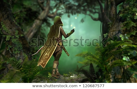 forest hunter girl with bow and arrow Stock photo © godfer