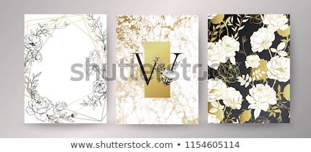 art deco frame botanical composition stock photo © kostins