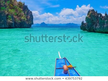 Palawan beach and limestone cliffs Stock photo © smithore