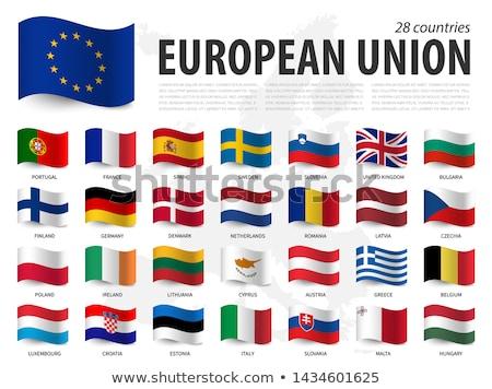 флаг Европейское сообщество Гранж кадр синий звездой Сток-фото © cla78