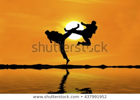 Judo puesta de sol ilustración hombre arte silueta Foto stock © adrenalina