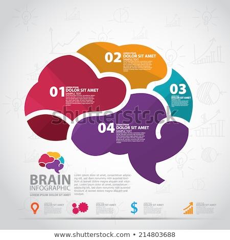 brain infographic stock photo © auimeesri