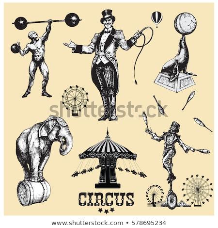 circus vintage Stock photo © tintin75
