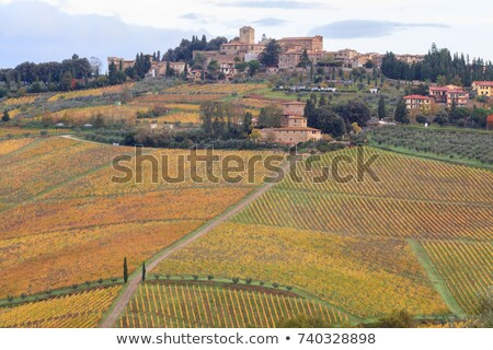 Panzano in Chianti Stock photo © LianeM
