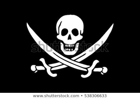 Vrolijk zwarte zwart wit piraat vlag schedel Stockfoto © sharpner