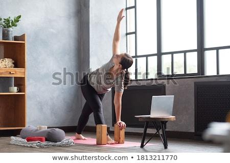 Sportos fiatal nő pózol fitt súlyzók izolált Stock fotó © acidgrey