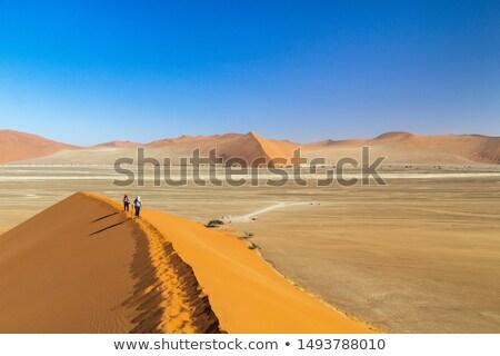 Duna Namibia view top panorama migliore Foto d'archivio © artush