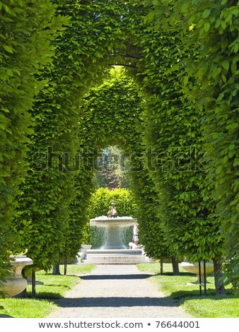 pergola in a french garden Stock photo © daboost