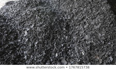 дерево уголь завода используемый лес Сток-фото © tang90246