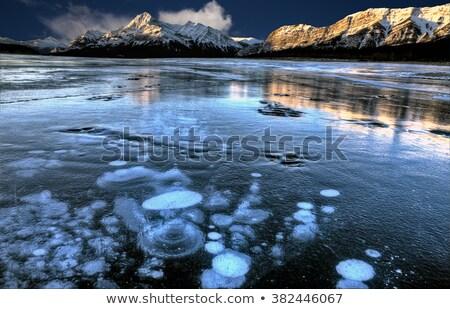 озеро зима льда пузырьки дизайна природы Сток-фото © pictureguy