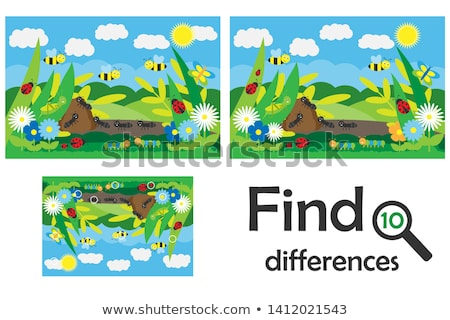 Different insects Stock photo © bluering