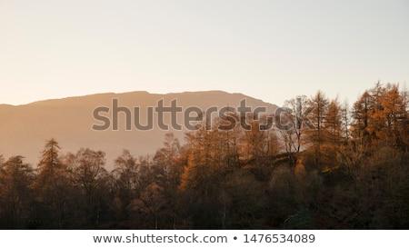 туманный горные пейзаж закат пород передний план Сток-фото © Kayco