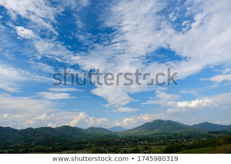 Scene with moutains and trees Stock photo © bluering