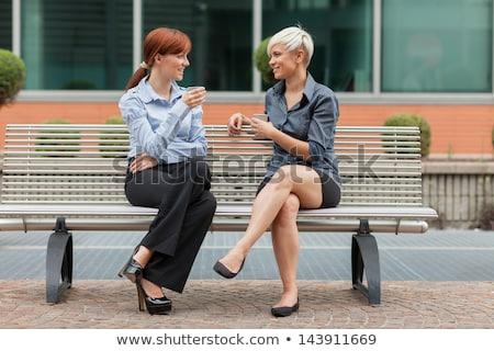 üzleti · partnerek · megbeszélés · kívül · épület · boldog · munka - stock fotó © pixinoo